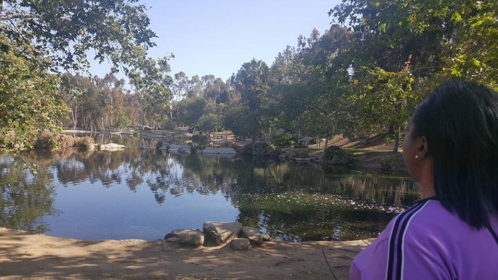 deb looking at lake